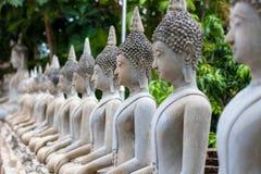 Wiele Buddha statua siedzi Obrazy Stock