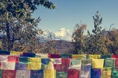 Wiele buddyjska modlitwa zaznacza dmuchanie w wiatrze zdjęcia royalty free