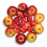 Wiele czerwone jabłko owoc w postaci okręgu odizolowywającego na białym tle Fotografia Royalty Free