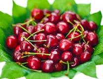 Wiele czerwone mokre czereśniowe owoc Obraz Stock
