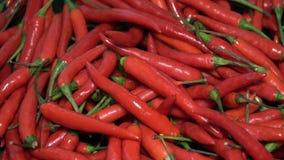 Wiele Czerwonego Chili pieprzy Wirować zbiory wideo