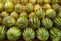 Wiele duzi cukierki zieleni arbuzy przy owocowym rynkiem zdjęcia royalty free