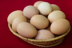 Wiele jajka w talerzu na czerwonym tle Obrazy Royalty Free