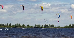 Wiele kitesurfers Obrazy Royalty Free