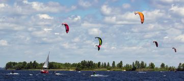 Wiele kitesurfers Obraz Stock