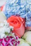 Wiele kwiatów selekcyjna ostrość Obraz Royalty Free