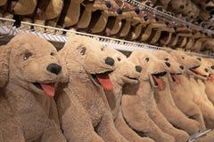 Wiele Labrador retriever lale dla sprzedaży Obrazy Stock