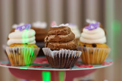 wiele muffins Zdjęcie Stock