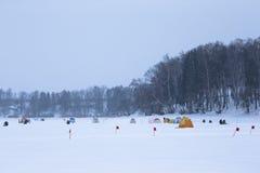 Wiele namioty na śnieżystym polu blisko lasu i flaga Fotografia Royalty Free