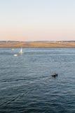 Wiele łodzie Boston lotniskiem Obraz Royalty Free