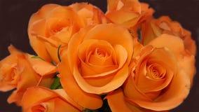 Wiele pomarańczowe róże w wiązce Zdjęcia Royalty Free