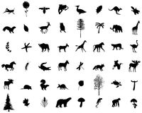 Wiele rośliny w wektorze i zwierzęta Fotografia Stock