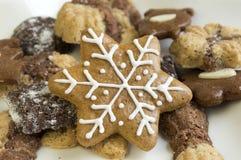 Wiele rodzaje Bożenarodzeniowi ciastka na biel gwiazdy talerzu Fotografia Stock