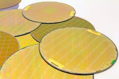 Wiele Silikonowi opłatki trzy typu - złociści kolorów wafes z mikroukładami fotografia royalty free