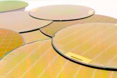 Wiele Silikonowi opłatki trzy typu - złociści kolorów wafes z mikroukładami zdjęcie royalty free