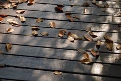 Wiele suchy na drewnianej podłoga Zdjęcie Royalty Free