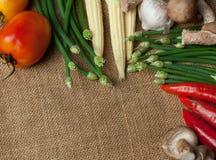 Wiele warzywa na worku Zdjęcia Stock