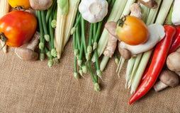 Wiele warzywa na worku Fotografia Royalty Free