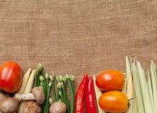 Wiele warzywa na worku Zdjęcia Royalty Free