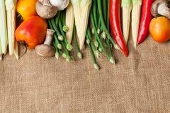 Wiele warzywa na worku Obraz Stock