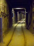 wieliczka соли Польши минирования шахты Стоковое Изображение