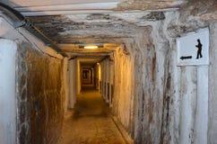 Wieliczka salt min, Polen royaltyfri bild