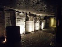 Wieliczka Salt Mine, Poland. Wieliczka Salt Mine interior in Poland Royalty Free Stock Photos