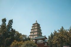 Wielka Dzika Gęsia pagoda fotografia stock
