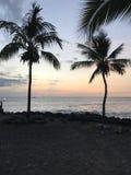 wielka Hawaii wyspę zdjęcia royalty free