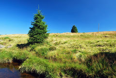 Wielka Izera meadows and river Stock Photos