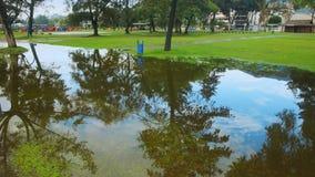 Wielka kałuża woda w Karolina parku po deszczu przy sunsetX Obrazy Stock