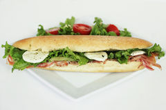 wielka kanapka Obraz Stock