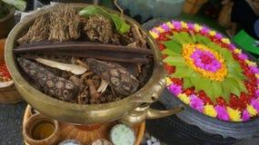 Wielka kombinacja kwiaty i pikantność! obraz royalty free