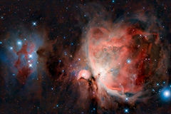 wielka mgławica Orion Obraz Royalty Free