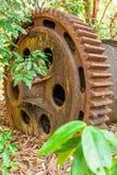 Wielka ośniedziała przekładnia Blaszana bagrownica w opustoszałej blaszanej kopalni Susi liście spadają na ziemi, tropikaln obraz stock