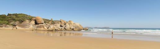 Wielka ocean droga, Portowy Campbell park narodowy, Wiktoria, Australia Obrazy Royalty Free