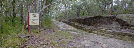 Wielka Północna droga blisko Bucketty lub, w myśliwy dolinie, NSW, Austrialia fotografia royalty free