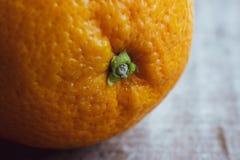 Wielka pępek pomarańcze owoc, zakończenie w górę fotografia royalty free