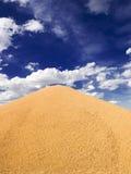 wielka palowa pszenicy zdjęcia stock