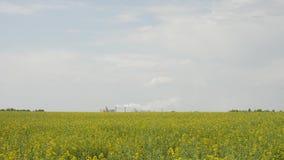Wielka roślina z dymem od drymb zdjęcie wideo