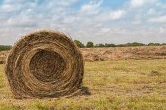 Wielka round trawy siana bela Obrazy Stock