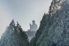 Wielka siedząca Buddha statua w słowie na lotosowym kwiacie obraz stock