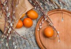 Wielkanoc barwił jajka w papierowej torbie z gałąź kici wierzba Zdjęcie Royalty Free