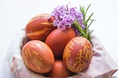 Wielkanoc barwił jajka z gałąź bez Obraz Stock