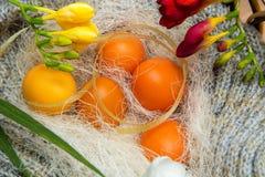 Wielkanoc barwił jajka na szarym trykotowym tle z kwiatami frezja Obrazy Royalty Free