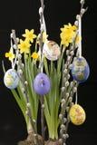Wielkanoc bazii jajka willow Zdjęcia Royalty Free
