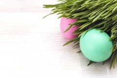 wielkanoc jaj świeżych trawa zieleni Zdjęcia Royalty Free