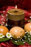 wielkanoc jaj białe kwiaty Zdjęcia Stock