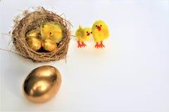 Wielkanoc karty szczęśliwy wielkanoc złote jajka zdjęcia stock