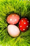 Wielkanoc kolor jaj Fotografia Stock